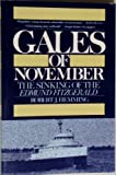 Gales of November, Robert J. Hemming, 0809253844