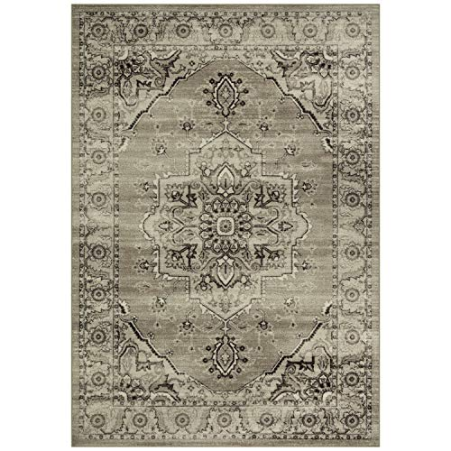Maples Rugs Area Rugs - Distressed Lexington 7 x 10 Large Rug [Made in USA] for Living Room, Bedroom, and Dining Room, Neutral