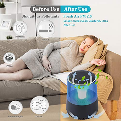 Air Purifier for Small Room (Black no speack)