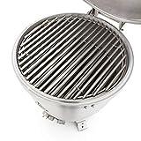 Blaze Cast Aluminum Kamado Grill