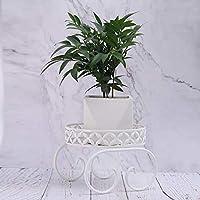 Metal Potted Plant Stand, Rustproof Decorative Flower Pot Rack with Indoor Outdoor Iron Art Planter Holders Garden Steel Pots (1-Tier White)