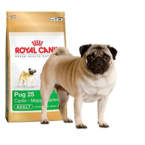 Royal Canin Pug Complete Adult Dry Dog Food 1.5KG