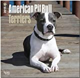 American Pit Bull Terrier Puppies 2015 Square 12x12 (Multilingual Edition)