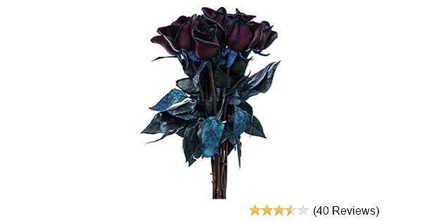 Amazon flower explosion black roses bouquet by real fresh amazon flower explosion black roses bouquet by real fresh tinted black roses 12 stems grocery gourmet food mightylinksfo