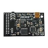 : Dreamblaster X2 Daughterboard Waveblaster MIDI Yamaha DB50XG NEC XR385 type card