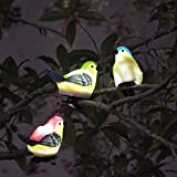 SOLAHOMF Solar Outdoor Decoration Lights- Bird Shaped Multi-colored Decoration Lights with Clip for Garden,Patio Tree Decoration Landscape Lighting, 3 Pack Review