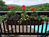 Garden Artisans 44' Wrought Iron Window Hayrack with Molded Coco Liner