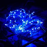 Starry Lights Plug in,2M 20LED Button Cell Powered Silver Copper Wire Mini Fairy String Lights,Landscape Lighting Accessories,Blue,2M