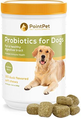 POINTPET Probiotics for Dogs – Natural Probiotic Supplement with Prebiotics, Relief from Diarrhea, Dry and Itchy Skin, Gas, Constipation, Allergies – Digestive and Immune Support, 120 Soft Chews