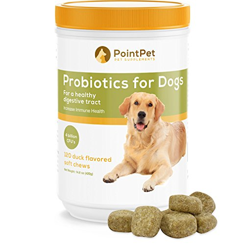 Cheap POINTPET Probiotics for Dogs with Digestive Enzymes – Relief from Diarrhea, Dry and Itchy Skin, Gas, Constipation, Allergies – Dog Probiotic Supplement, 120 Soft Chews