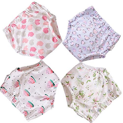 BBPIG Potty Training Pants for Baby and Toddler Girls, Baby Underwear 4 Pack (100(3T), G4 by BBPIG
