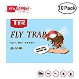 Best Fruit Fly Traps - Fly Trap, Fly Paper, Fruit Fly Trap,Effective Review