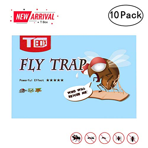 Fly Trap, Fly Paper, Fruit Fly Trap,Effective & Portable Fly Traps for Outdoor and Indoor Use-10 Pack