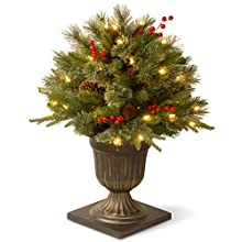 "National Tree 26 Inch ""Feel Real"" Colonial Porch Bush with Cones, Red Berries and 50 Clear Lights in Decorative Urn (PECO1-300-24P)"