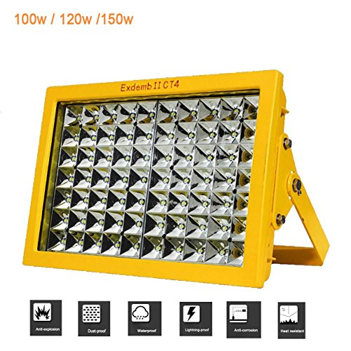 Explosion Proof Flood Light