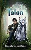 Talon - epic fantasy novel (The Astor Chronicles Book 1)