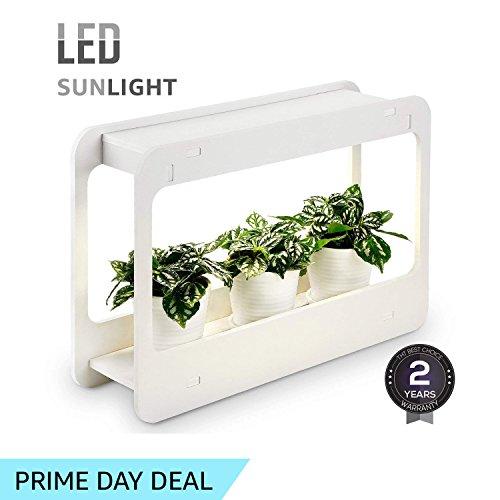 Led Light Herb Garden in Florida - 1