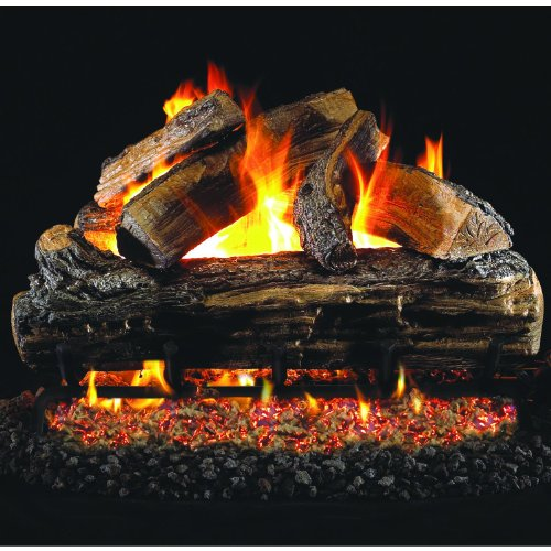 Dual Burner Manual (Peterson Real Fyre 20-inch Split Oak Gas Log Set With Vented Natural Gas Ansi Certified G46 Burner - Manual Safety Pilot)