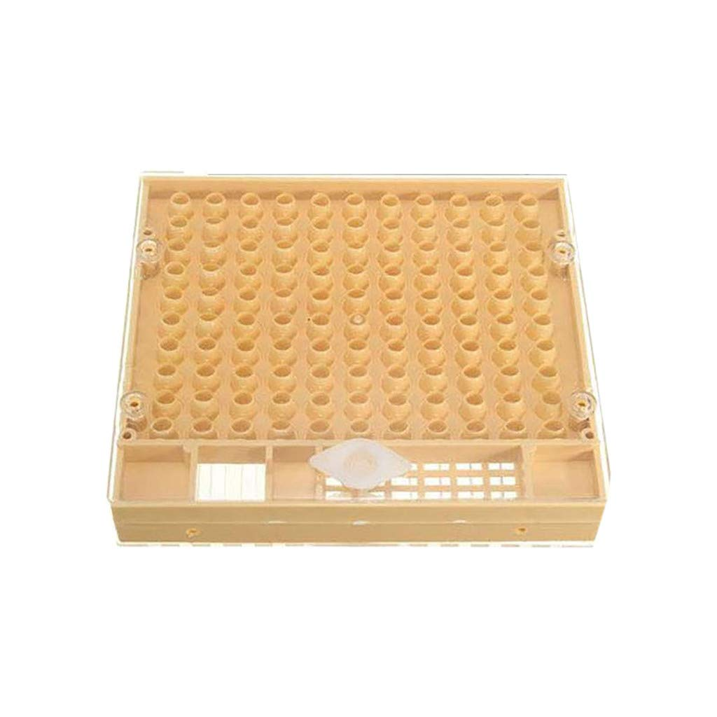 Incubator protective cover white//Yellow//Black Part Cultivating Box Brown King Cup Hukezhu Beekeeping Complete Cell Cup kit Catcher Cage