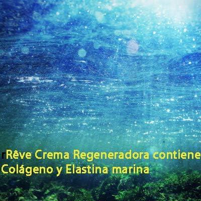 REVE Crema Regeneradora Jalea Real con Elastina y Colágeno Marino - Hombre y Mujer, Día y Noche - Cosmética natural sin parabenes - Para todo tipo de pieles - 55 ml