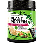 MuscleXP Plant Protein – Natural Protein Powder with Pea Protein, Herbal and Vegetable Blend, 400g (Sugar Free)