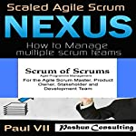 Agile Project Management Box Set: Scaled Agile Scrum: Nexus & Scrum of Scrums |  Paul Vii