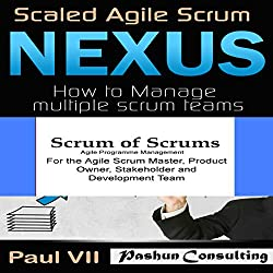 Agile Project Management Box Set