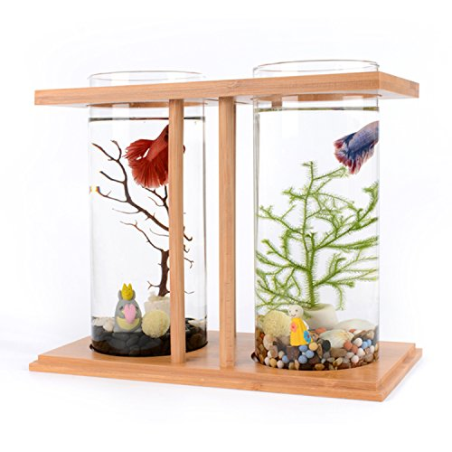 Segarty Cool Design Desktop Glass Fish Tank - Small Fish Bowls with Dual Glass Vase and Bamboo Shelf - 360 Degree View Fish Aquarium Kit For Betta Fish, Livingroom Home Office - Blessings Glass Bowl