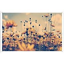 "Flower Tin Sign Flowers Box Shadow Sky 19338 by Waller's Decor (7.8""x11.8"")"
