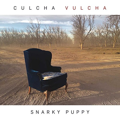 Culcha Vulcha performed by Snarky Puppy