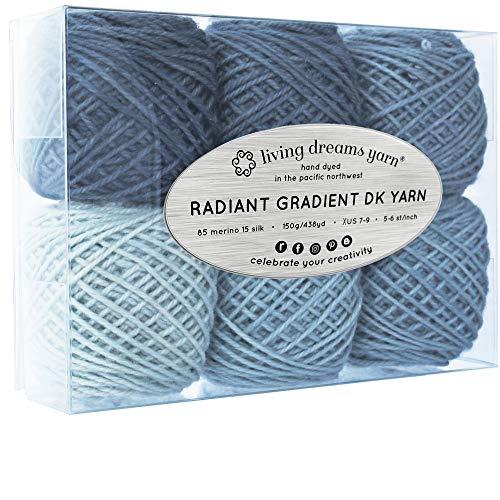 (Living Dreams Radiant Gradient DK Yarn. Super Soft Merino Silk. USA Hand Dyed: Thunderstorm)