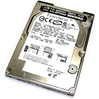 40GB IDE IBM Travelstar 40GN 4200RPM 2MB ATA-5 9.5mm IC25N040ATCS04-0