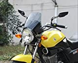 選べる2色 汎用 風防 スクリーン メーター バイザー カウル 【ADVANTAGE】 ネイキッド バイク に クリアー スモーク
