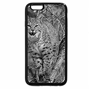 iPhone 6S Case, iPhone 6 Case (Black & White) - Lince
