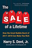 img - for The Sale of a Lifetime: How the Great Bubble Burst of 2017-2019 Can Make You Rich book / textbook / text book