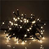 JnDee Waterproof Fairy Lights 32M 300 LED WARM WHITE Colour with 8 Light Effects Functions, for Both Indoor and Outdoor Christmas Tree Wedding Parties Decoration 34V Safe Voltage