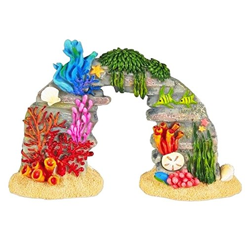 New Miniature Mary Engelbreit Mini Dollhouse FAIRY GARDEN Accessoriess - Coral Reef with Sea Life - Mini.