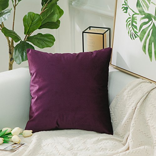 HOME BRILLIANT Velvet Decorative Euro Throw Pillow Sham Large Cushion Cover for Patio/Kids, 26x26 inch(66cm), Eggplant Plum Square Pillow