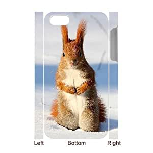 MMZ DIY PHONE CASEALICASE Diy 3D Protection Hard Case Squirrel For iphone 6 plus 5.5 inch [Pattern-1]