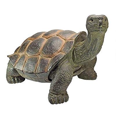 Design Toscano The Cagey Tortoise Statue : Garden & Outdoor