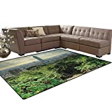 Urban,Rug,Dramatic Cityscape of Taipei Famous Landmark 101 Skyscraper Trees in Park,Home Decor Floor Carpet,Green Bluegrey Tan Size:6'x8'