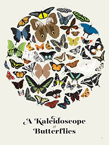 Pop Chart Lab A Kaleidoscope of Butterflies Poster Print, 18