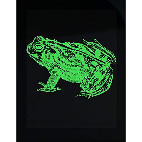 Stuch Strength Frog Transparent Sticker - Amphibian - Toad Gifts