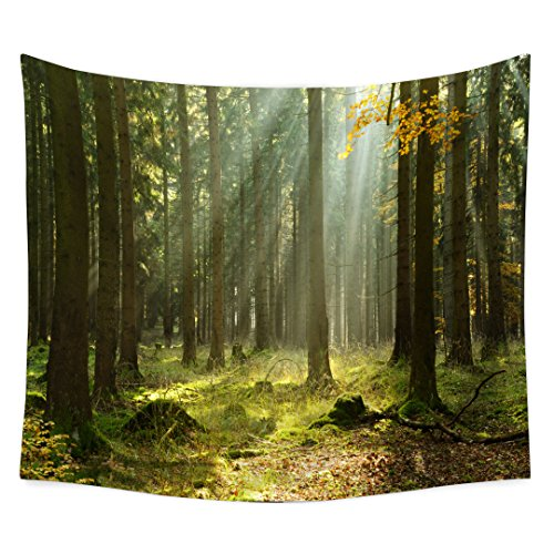 QCWN Mystic Forest Farm House Decor - Tapiz Decorativo para Pared, Diseño de Bosque Oscuro con Vigas de Sol, Verde Claro,...
