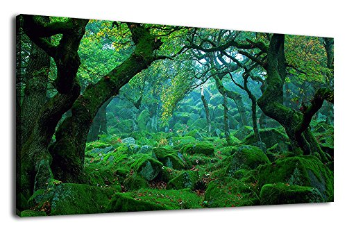 Canvas Forest Green - Green Forest Canvas Wall Art Living Room Decoration Big Trees Nature Picture Large Modern Canvas Artwork Contemporary Woods Mossy Rock Spring Season Prints for Kitchen Office Home Decoration 20