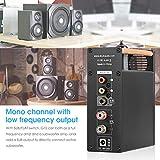 Douk Audio G10 Mono Channel Tube Amplifier