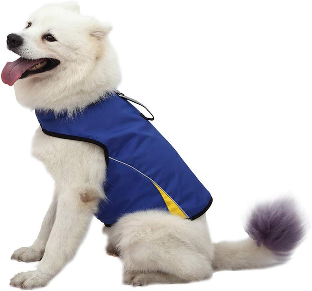8 best dog comfort vest 3