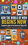 How the world of Wow begins Now!: A Beginners Guide to the Internet of Things