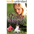 Love Begins: A Contemporary Christian Romance Novel (Tender Blessings Book 1)