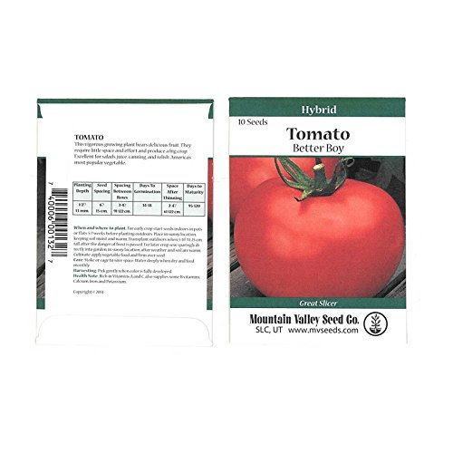 Tomato Garden Seeds - Better Boy Hybrid -10 Seed Packet - Non-GMO, Vegetable Gardening Seed